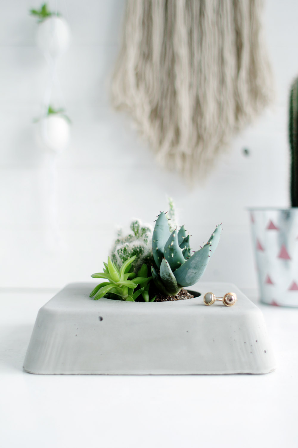 DIY Concrete Succulent Planter   Household Appliance Evaluation Reviews,  Ratings and Buying Guides