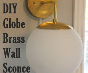 DIY Globe Brass Wall Sconce