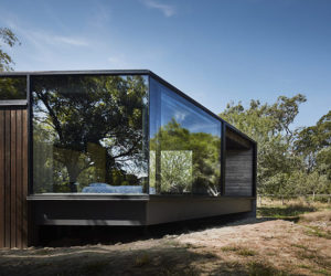 A Pavilion Extension Spares All The Trees On The Site And Gives Them A Function